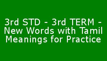 3rd STD - 3rd TERM - New Words with Tamil Meanings for Practice