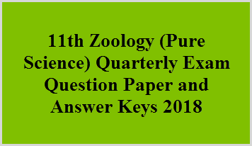 11th Zoology (Pure Science) Quarterly Exam Question Paper and Answer Keys 2018